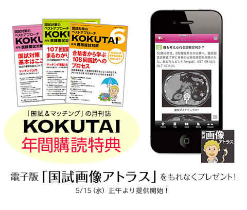 kokutai_blog1.png